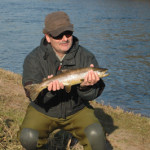 Brown Trout Coarses