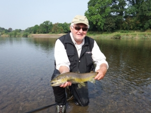 Brown trout - Upper beat