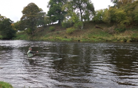 River Eden 20th October 2014.