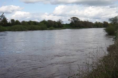 River Eden May 9th 2015