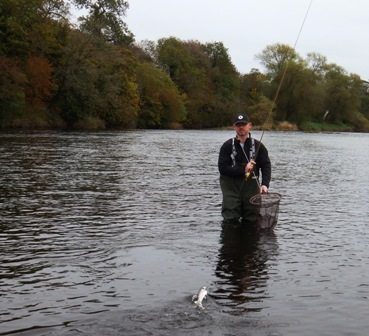 Out and about on the river eden cumbria fly fishing for Fly fishing jobs