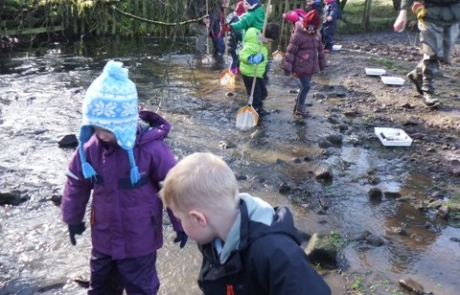 Greystoke school outing to the North Petteril.