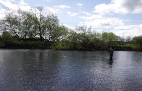River Eden April 23rd 2017.