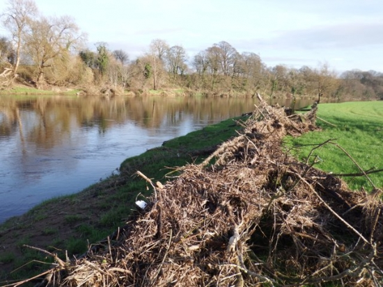 floods 017